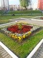 Фото пользователей 3 с foursquare.com