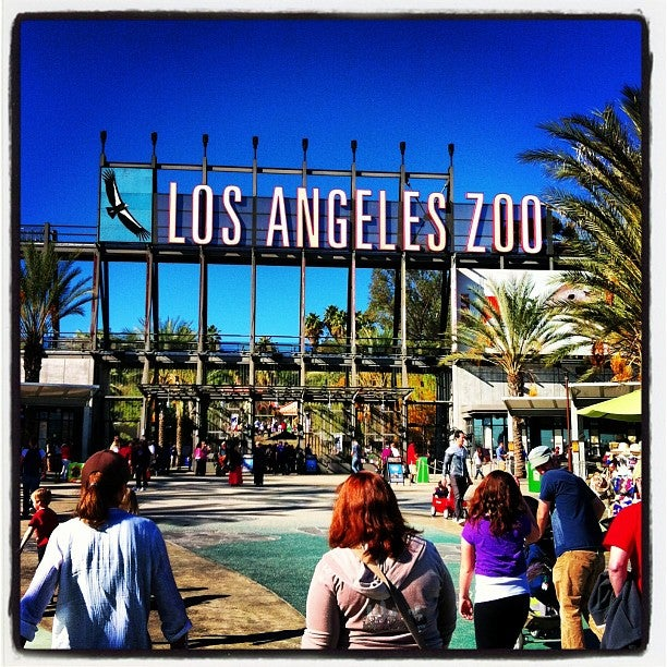 Los Angeles Zoo Tickets St Louis Zoo Coupons Safari Pass