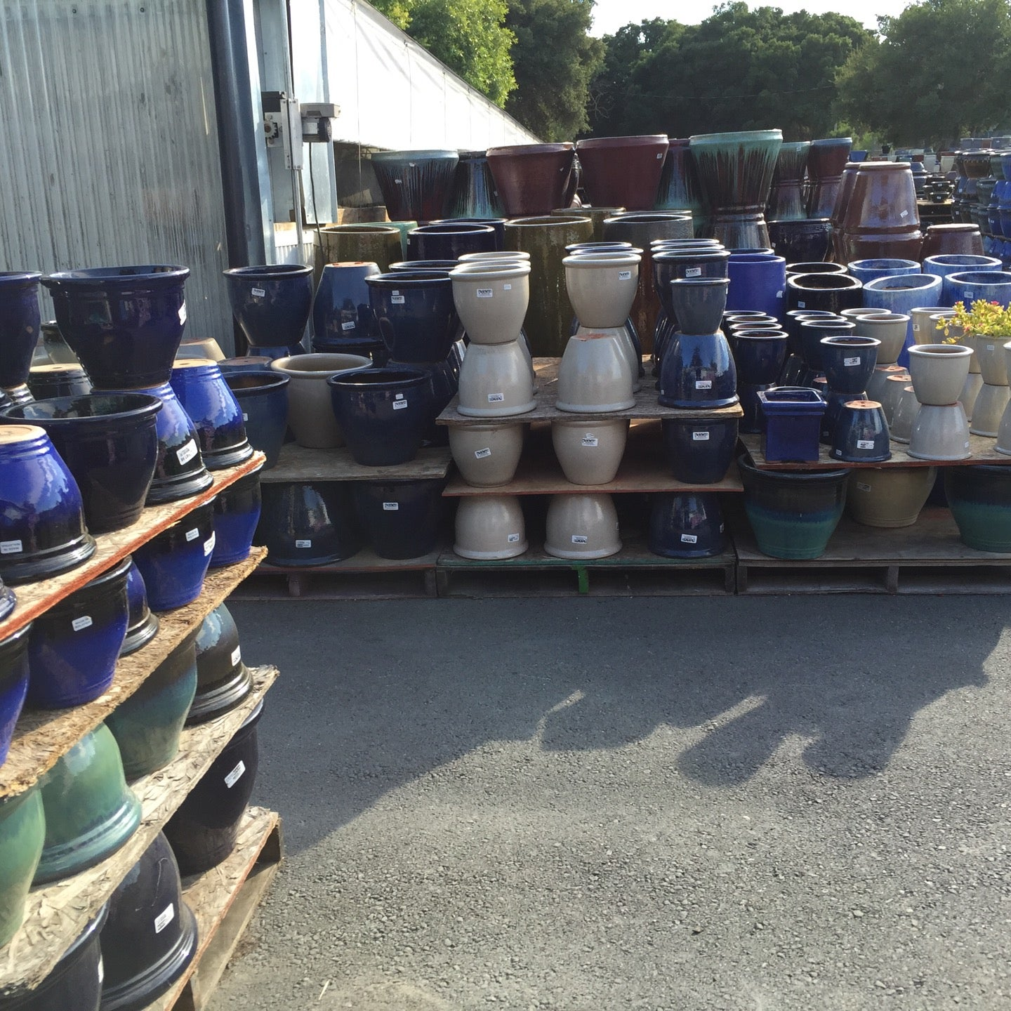 Plant and Pottery Outlet in Sunol - Parent Reviews on Winnie