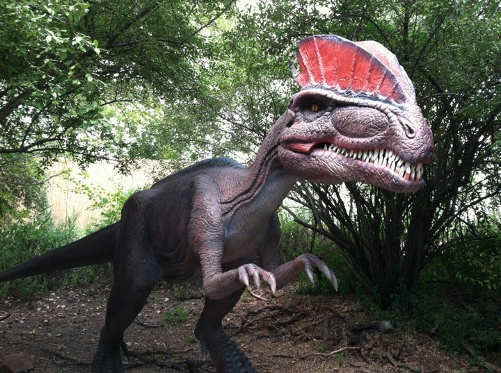 Field Station: Dinosaurs in Secaucus - Parent Reviews on Winnie