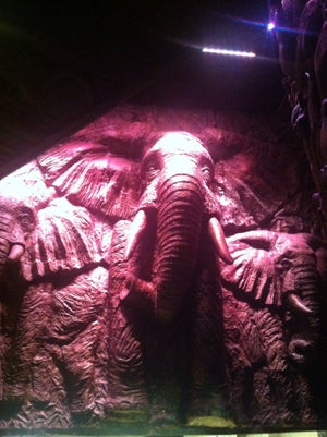 Shaka Zulu, London - Bars, clubs and events worldwide - Banananights