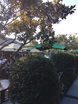 Albion hotel, Parramatta - Bars, Clubs und Events weltweit - Banananights