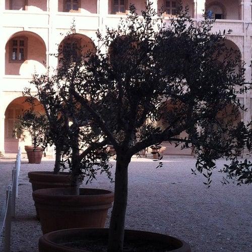 Centre de la Vieille Charité_24