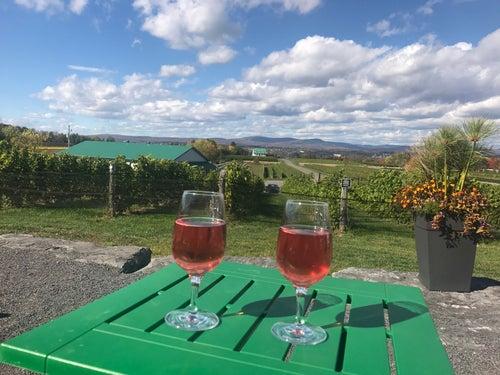 Vignoble de Ste-Pétronille