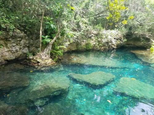 Parque Ecológico Ojos Indígenas