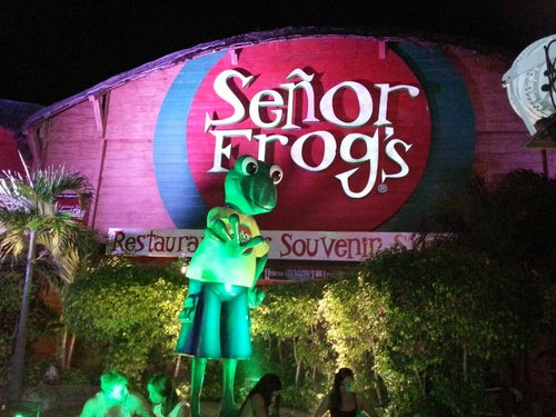 Señor Frog's_24