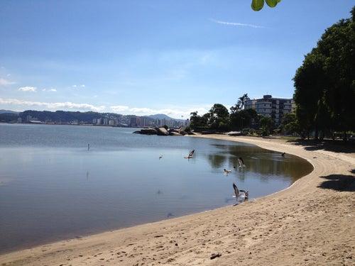 Praia do Bom Abrigo