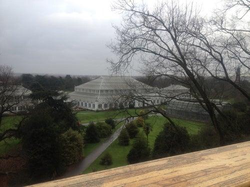 Kew Gardens_24