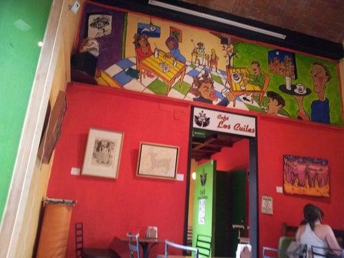 Café Los Cuiles_24