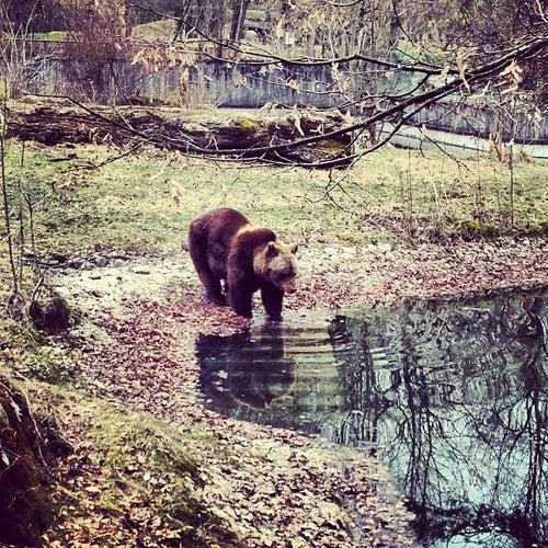 Tierpark Hellabrunn_24