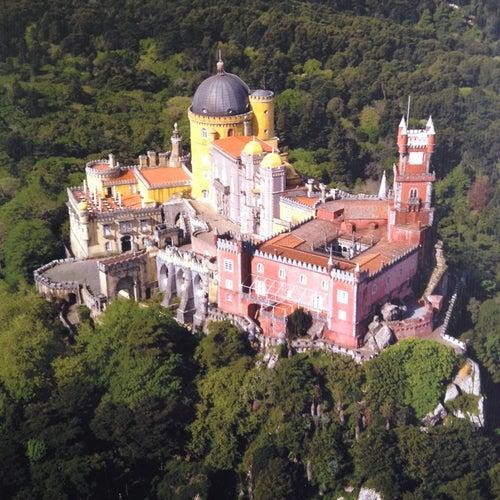 Parque e Palácio Nacional da Pena_24