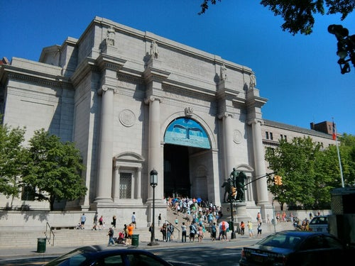 Museo Americano de Historia Natural_24
