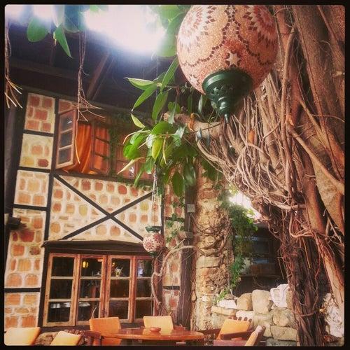Apollonik Café