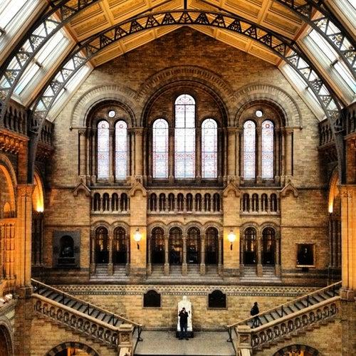Musée d'histoire naturelle de Londres_24