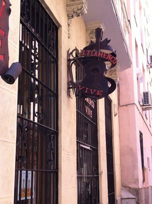El Flamenco Vive_4