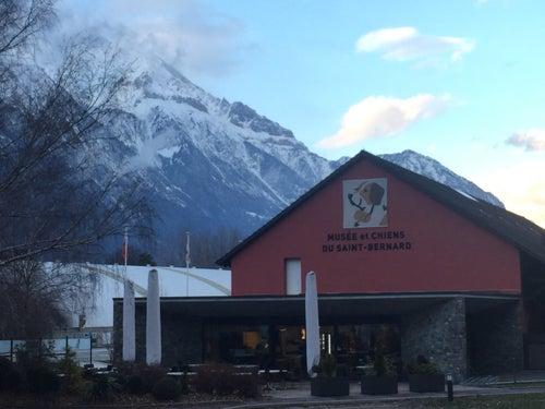 Musée et Chiens du Saint-Bernard