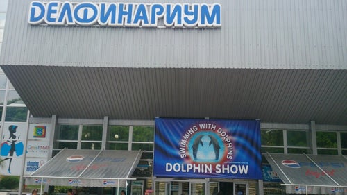 Dolphinarium_6