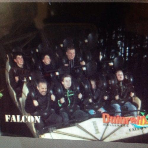 Falcon_24