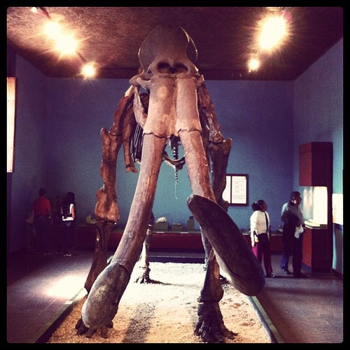 Museo Regional de Guadalajara_24