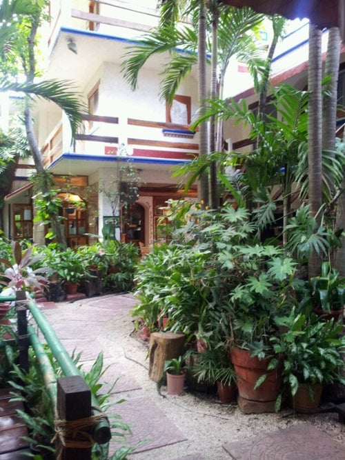 Eco Hotel El Rey del Caribe_20