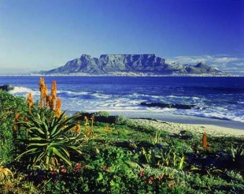 Table Mountain National Park_24