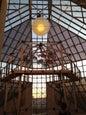 Musée d'Art Moderne Grand-Duc Jean_5