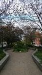 Park Avenue_11