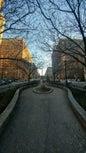 Park Avenue_5