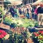 Columbia Road Flower Market_1
