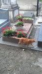 Cementerio de Montmartre_10