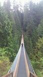 Capilano Suspension Bridge_5
