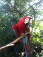 Parque zoológico_3