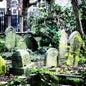 Highgate Cemetery_8