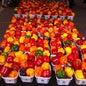 St. Jacobs Farmers' Market_5