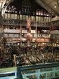 Pitt Rivers Museum_7