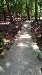 Gunung Merapi_2