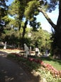 Giardini di Augusto (Augustus-Gärten)_6