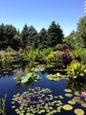 Denver Botanic Gardens_5