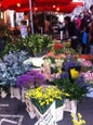 Columbia Road Flower Market_12