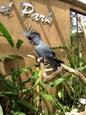 Taman Burung_8