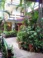 Eco-hotel El Rey del Caribe_5