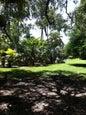 Jardin botanique tropical Fairchild_7
