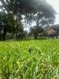 93 Park_10