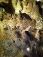 Grotte la Merveilleuse_2