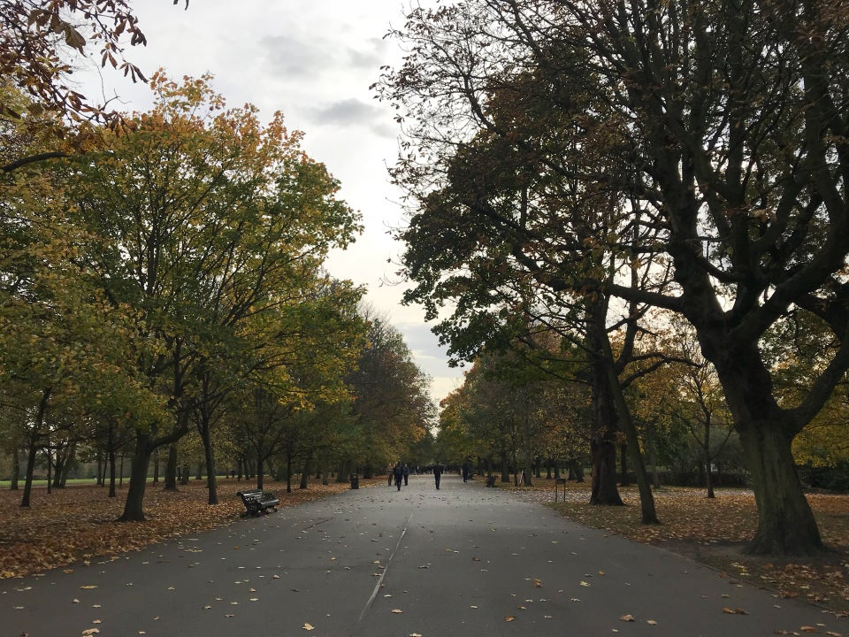 Photo of The Royal Park