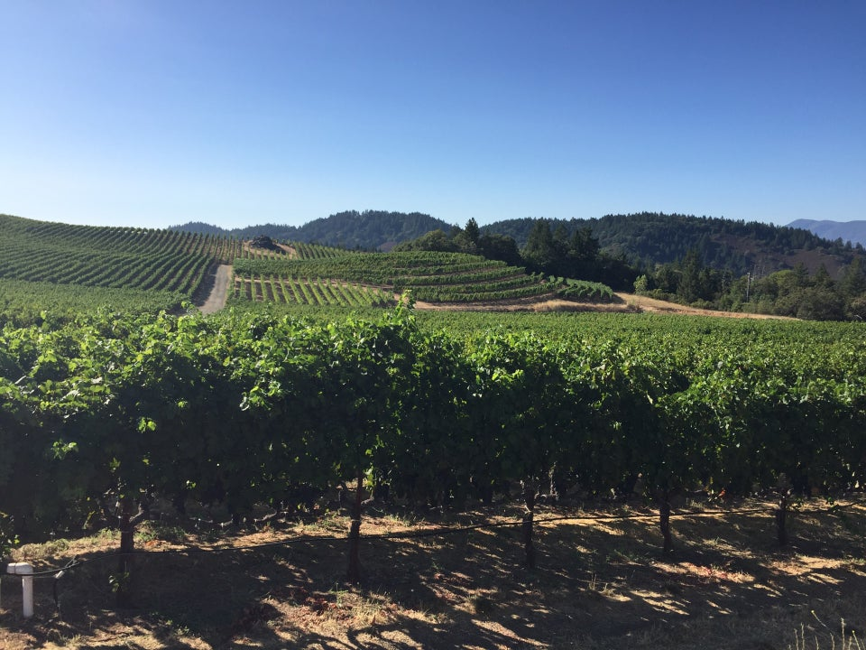 Photo of Pride Mountain Vineyards