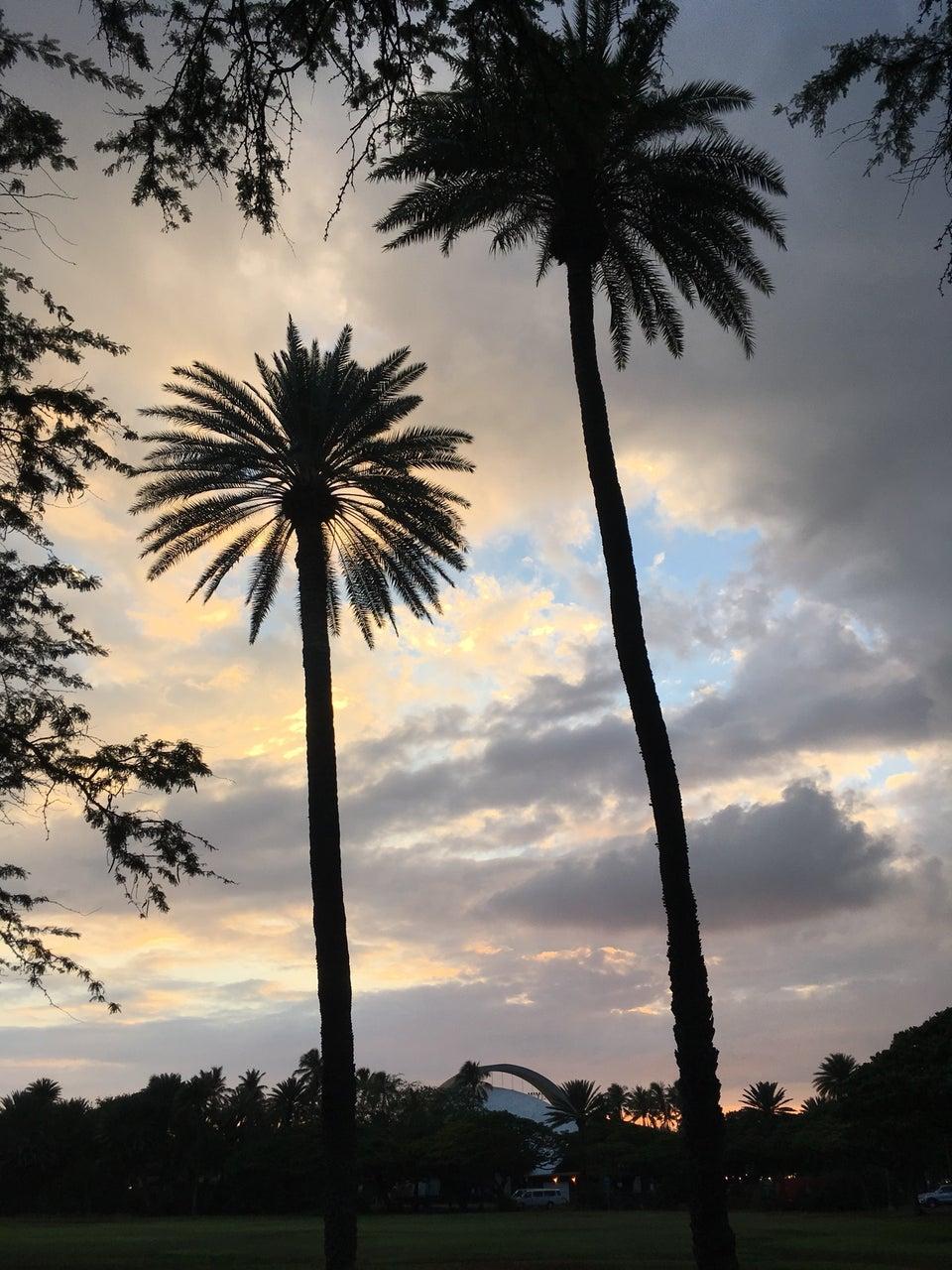 Photo of Waikiki Shell