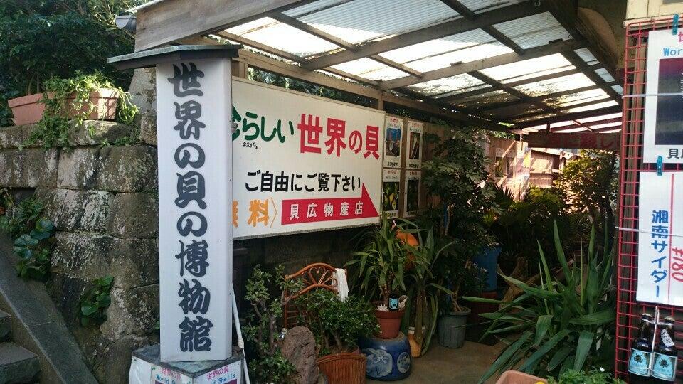 貝広物産店/世界の貝の博物館