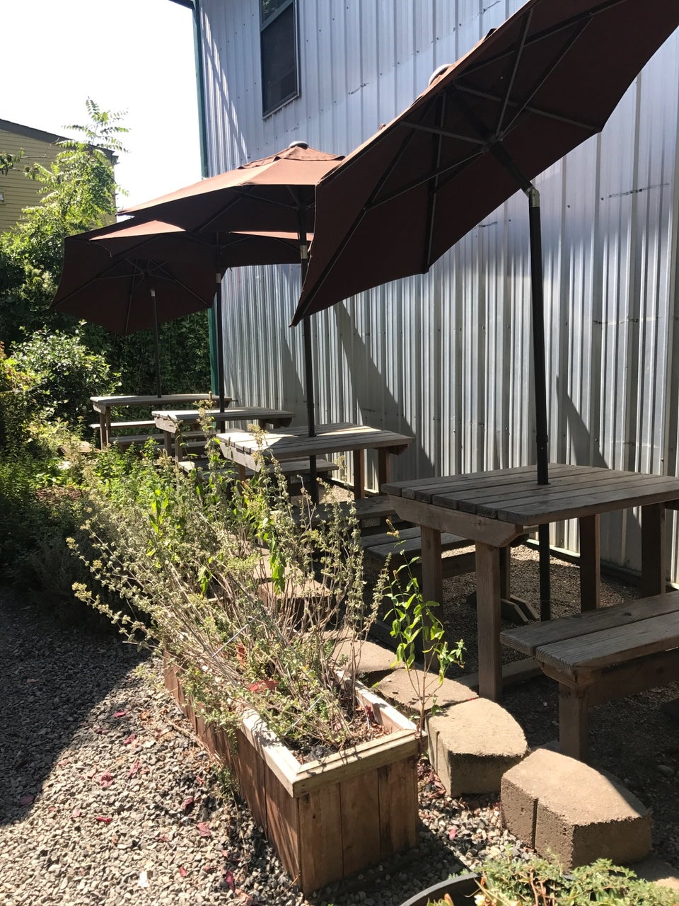 Photo of Tin Shed Garden Cafe
