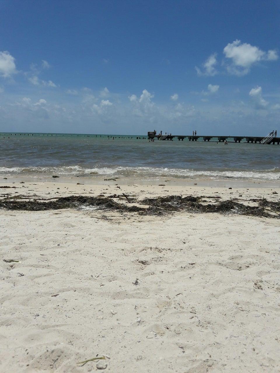 Higg's Beach